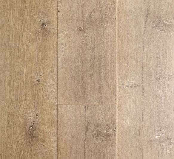Oakleaf Aspen Oak
