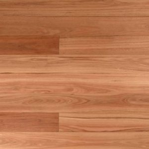 Australian Blackbutt