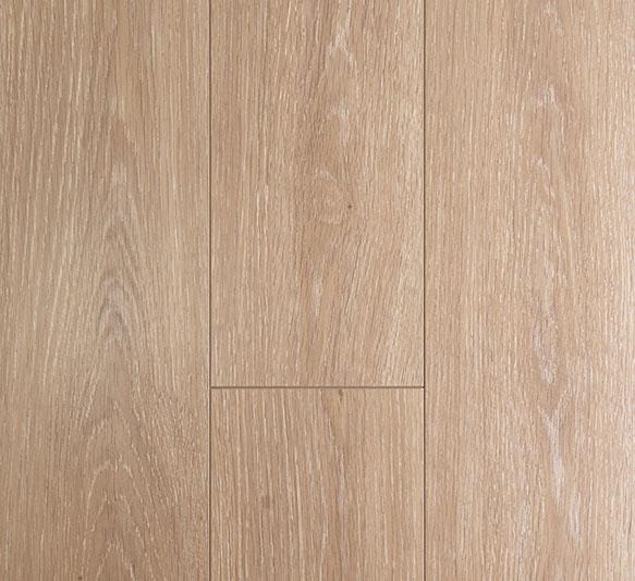 Oakleaf Limesmoke Oak