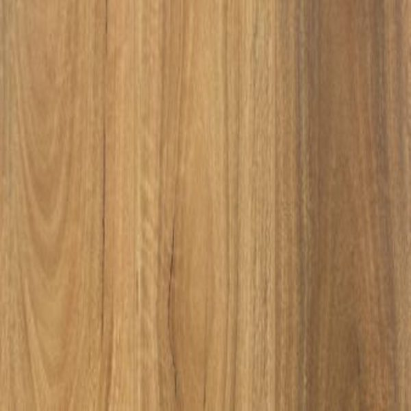 Reflections - Spotted Gum