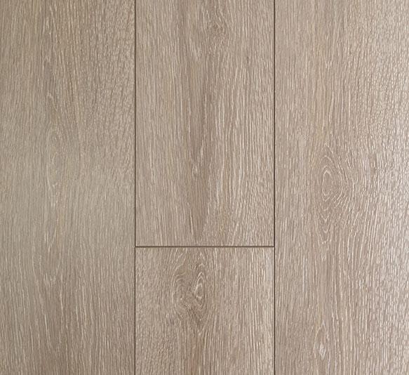 Oakleaf Seashell Oak