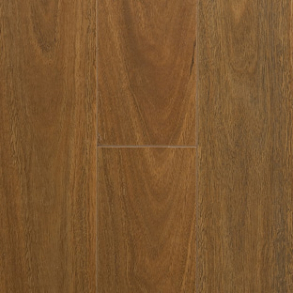 Preference Classic Spotted Gum
