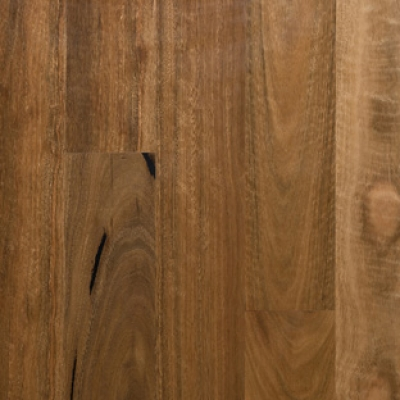 Preference Select Spotted Gum